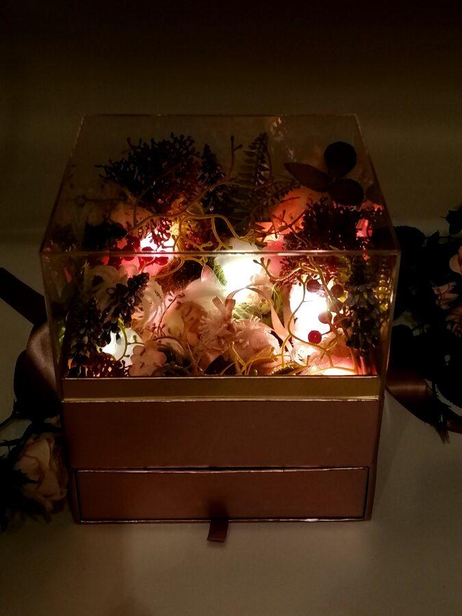 Sapnų Fėja magiškoje šviečiančioje dėžutėje