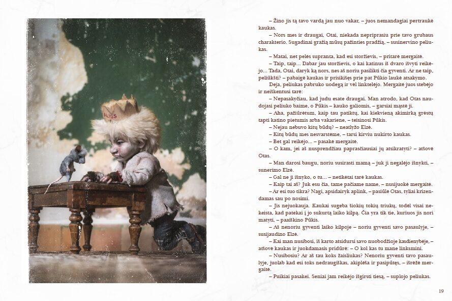Knyga ,,Popierinė karūna''